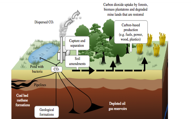 Schematic showing both terrestrial and geological sequestration of carbon dioxide emissions from a coal-fired plant.